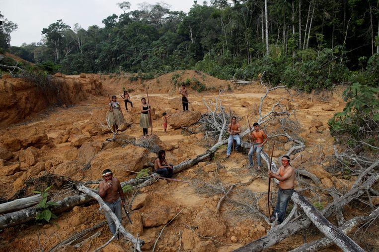 Ontbossing in de Braziliaanse Amazone. Beeld Reuters
