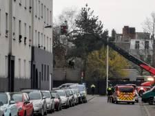 Agressieve man klimt in boom om te ontkomen aan politiecontrole