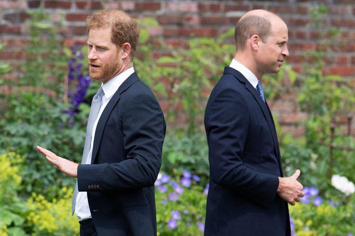 Le prince Harry et le prince William durant la cérémonie en hommage à leur mère décédée Diana.