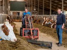 Helpende handen houden boerderij draaiende van gezin uit Marle dat muurvast zit in Nieuw-Zeeland