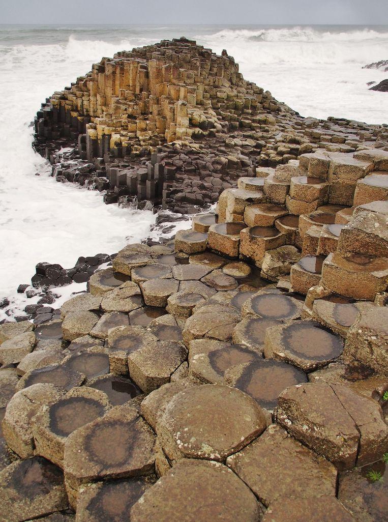 Het natuurwonder van Giant's Causeway. Beeld Imco Lanting