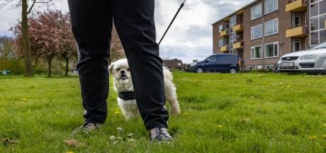 Opnieuw hondenpootjes gevonden in Emmeloord: 'Te afschuwelijk voor woorden'