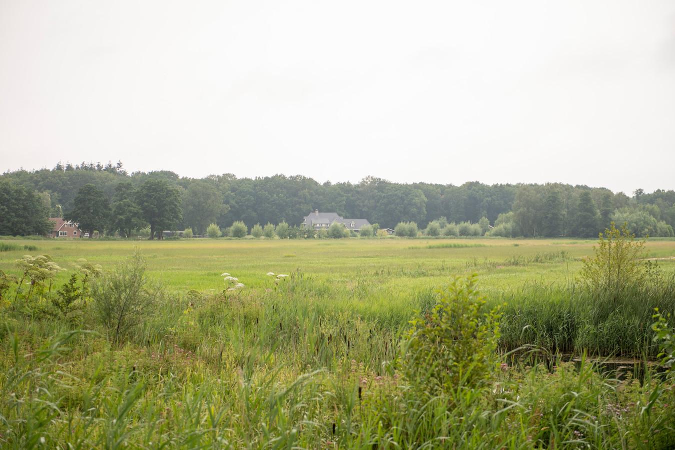 Het weiland aan de Enterveenweg is bestemd voor de realisering van een zonnepark. De buurt is  tegen.