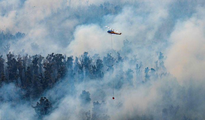Een helikopter dumpt water boven East Gippsland in de staat Victoria.