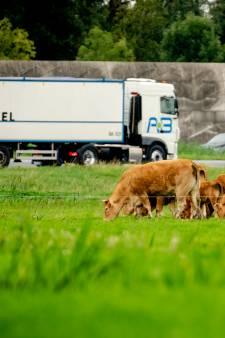 Links wil dat boeren wijken voor natuur, VVD en CDA proberen platteland te vriend te houden