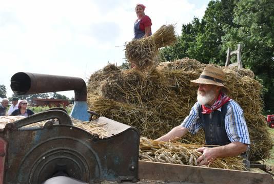 Tijdens de Historische Oogstdag in Ophemert werden ook oude landbouwmachines ingezet.
