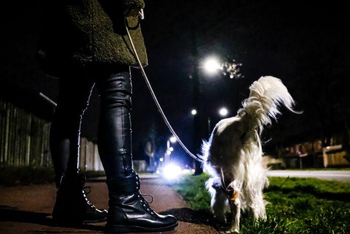 Hond uitlaten. Foto ter illustratie.