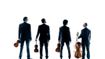 """Wereldtop vioolmuziek zakt af naar Truiense academiezaal: """"Wat FC Barcelona is voor het voetbal, is het Danel Quartet voor de vioolmuziek"""""""