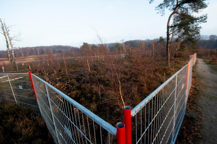 Bouwhekken op de hei bij Radio Kootwijk vanwege asbest in de grond.