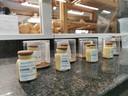 Het ludieke coronavaccin uit marsepein van bakker Jan Dierickx-Visschers uit Izegem.
