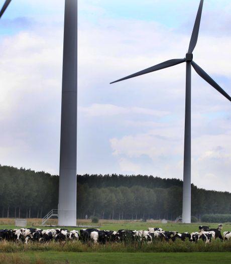 Heel Culemborg krijgt stroom van nieuwe windmolens
