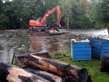 Na vijf jaar mogen de boomstammen eindelijk het water uit