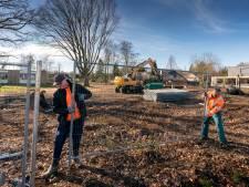 Bouw van de woonwijk 'Lindenlust' in Boxtel komt nu echt op stoom: monumentale bomen gekapt