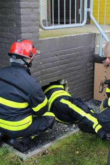Waalwijkse brandweer hakt gat in muur om kat te redden