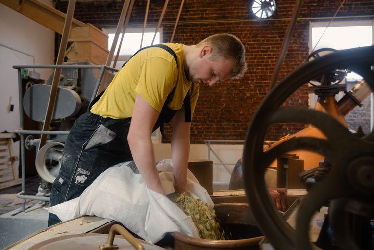 Florian Van Roy voegt de hop toe voor het bier in brouwerij Cantillon. Beeld Illias Teirlinck