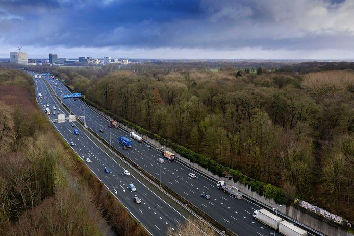 De aanleg van wegen en het verkeer dat daar overheen rijdt leidt tot stikstofneerslag in (beschermde) natuurgebieden, zoals hier bij Amelisweerd bij Utrecht. De stikstofproblematiek speelt ook bij de plannen voor Gebiedsontwikkeling Oostelijke Langstraat een belangrijke rol.