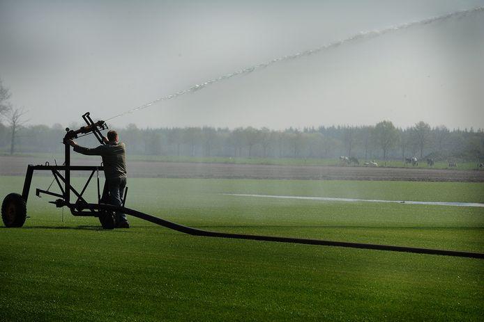 'Er is een enorme toename in het grondwatergebruik voor beregening van akkers en weilanden.'