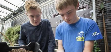 Borculose school in ban van de neushoornkever: 'Ik had er op een gegeven moment zeven op één schep'