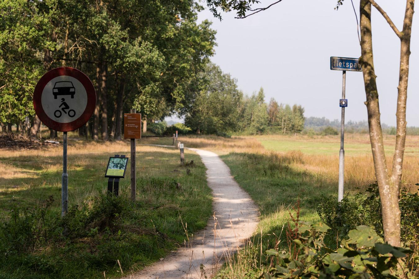 Aan de Zuidwestrand van het Haaksbergerveen wordt 7,5 hectare grasland omgevormd tot bos, door deze winter nog 28.000 bomen en struiken aan te planten.