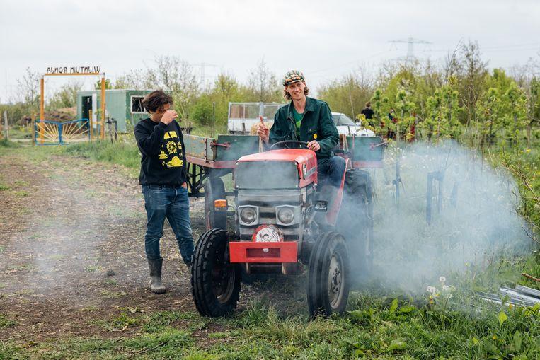 Eise van Maanen op de tractor. Beeld Jurre Rompa