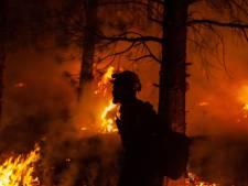 Nederlandse Gert is brandweerman in VS: 'Branden zijn groter, ze beginnen eerder'