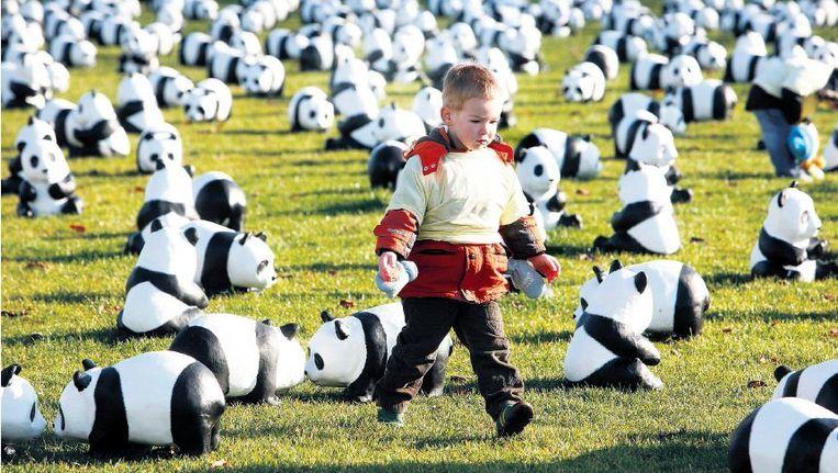 Panda's op het Museumplein is Amsterdam. De grootste natuurbeschermingsorganisatie ter wereld heeft met haar logo een machtig middel in handen. ©MAARTEN HARTMAN Beeld