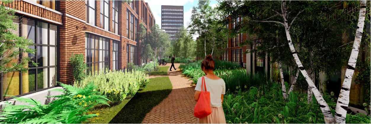 Groen van gevel tot gevel: dat is het idee voor de nieuwe wijk.