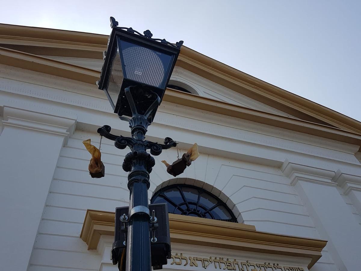 De 'varkensoren' aan de lantaarnpaal voor de synagoge in Kampen.