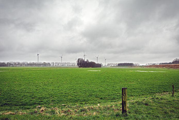 De Oranjepolder. Op de achtergrond de bestaande windmolens op Weststad.