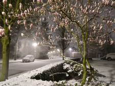 Winterse buien houden nog even aan: morgenochtend in Oost-Nederland mogelijk zelfs laagje sneeuw