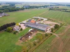 Vergunning superstal voor 1344 koeien in Asten-Heusden verleend