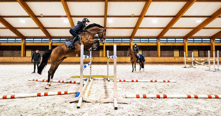 Yannick Janssen van Grunsven springt terwijl zijn zus Ava Eden (rechts) en trainer Jack Ansems toekijken. Beeld Klaas Jan van der Weij / de Volkskrant