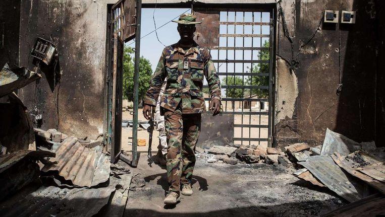 Het Nigeriaanse leger wint steeds meer terrein terug op Boko Haram. Beeld afp
