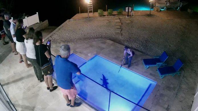 De ongewenste gast uit het zwembad krijgen blijkt ook geen pretje te zijn.