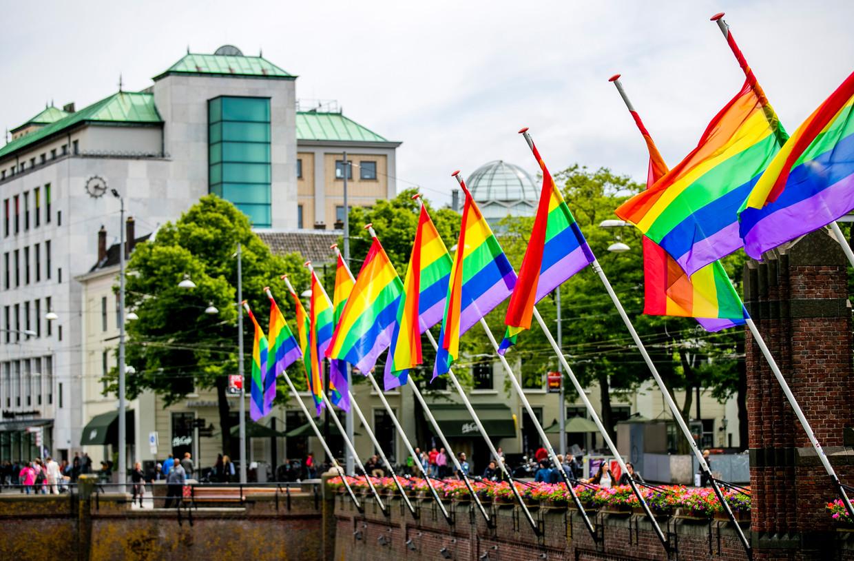 Regenboogvlaggen hangen niet uit bij elke politieke partij. Beeld Hollandse Hoogte /  ANP