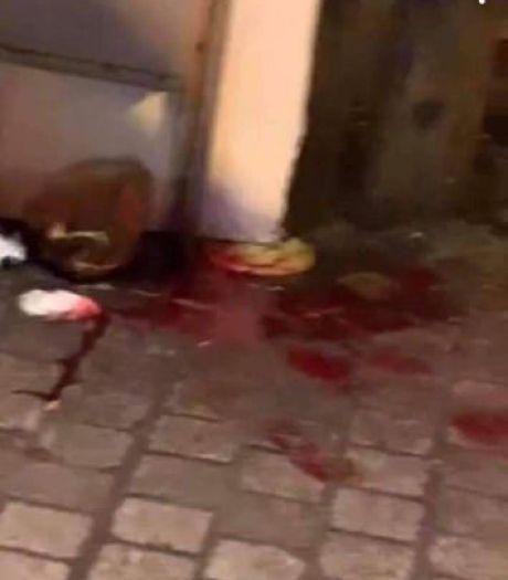 """Agression ce lundi dans le Carré: non, personne n'est décédé, """"c'est une fake news"""""""