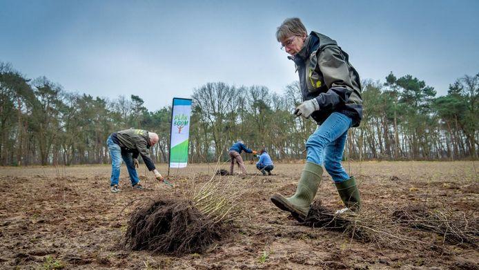 Vrijwilligers van IVN in actie voor Plan Boom. In totaal moeten in dat kader wel 1 miljoen nieuwe bomen worden geplant.