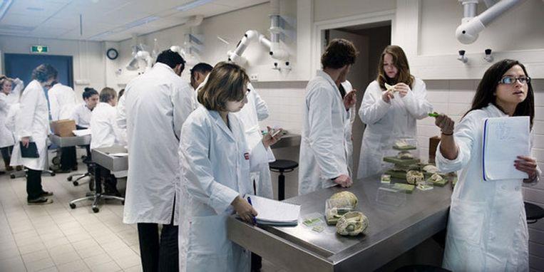Snijzaal 3 in het UMCG Groningen. Assistenten in opleiding krijgen hier een cursus neuro anatomie. Foto © Reyer Boxem Beeld