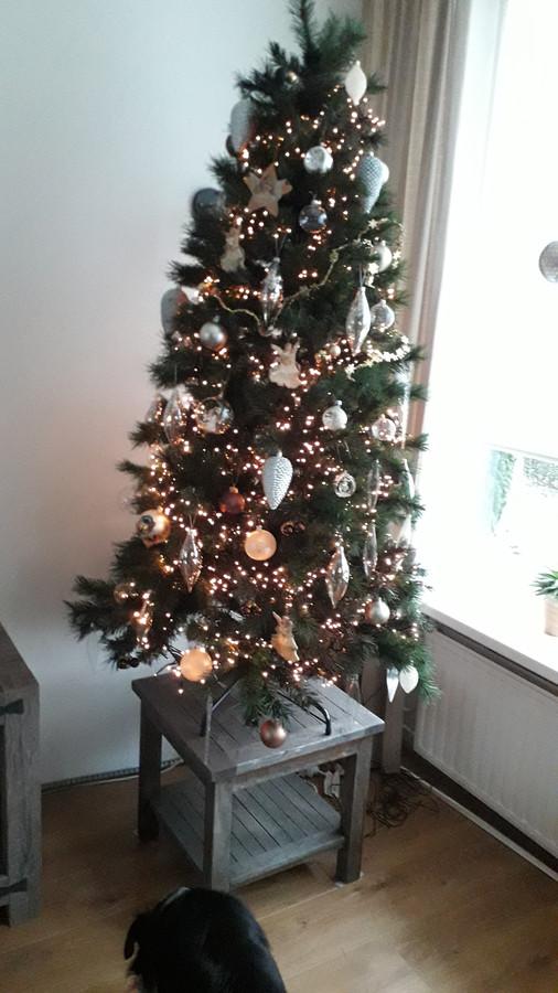 De kerstboom van Monique Laarakkers staat!