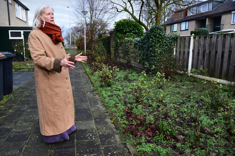Ada Branderhorst wijst op het stukje groen dat ze naar eigen zeggen dertig jaar terug al voor 150 gulden heeft gekocht. Beeld null