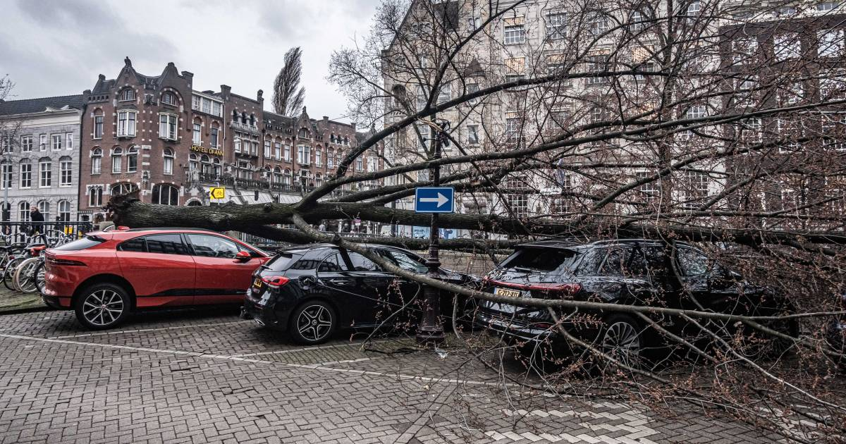 Lentestorm zorgt voor minstens 30 miljoen euro aan schade - AD.nl