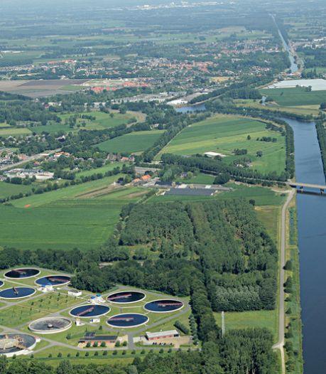 Ecologische zonneweide in Aarle-Rixtel spaart dassen