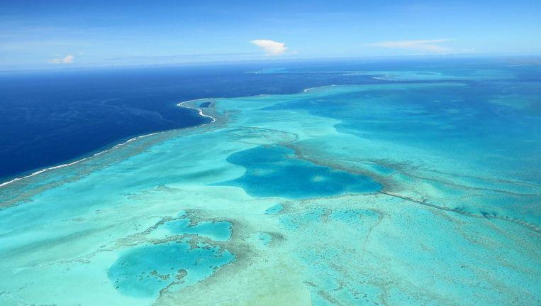 De oceaan en koraalriffen rond Nieuw-Caledonië. Beeld thinkstock