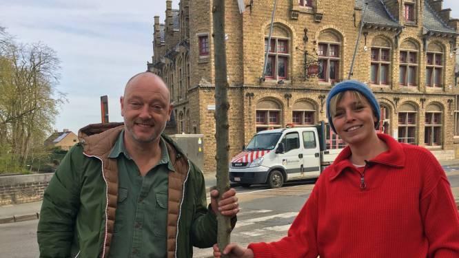 Diksmuide geeft dakloze bijen een kans. Chocolatier Dominique Persoone en tv-figuur Britt van Marsenille kwamen op inspectie