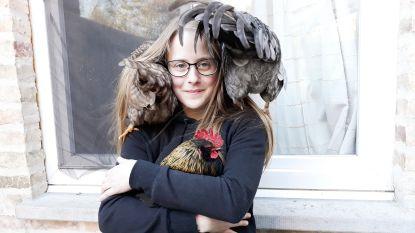 Wendy (20) ving dit jaar 400 gewonde dieren op: nu is haar asiel officieel erkend