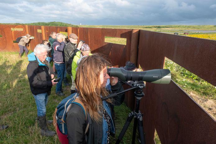 Suzan Belterman haalt achter de gluurmuur bij de kruising Slaakweg/Hogeweg een aantal vogels dichterbij met de telescoop van gids Floor Arts.
