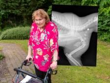 Drama voor gehandicapte Corinne (79) uit Ermelo: wie schoot haar maatje Diablo uit de boom?