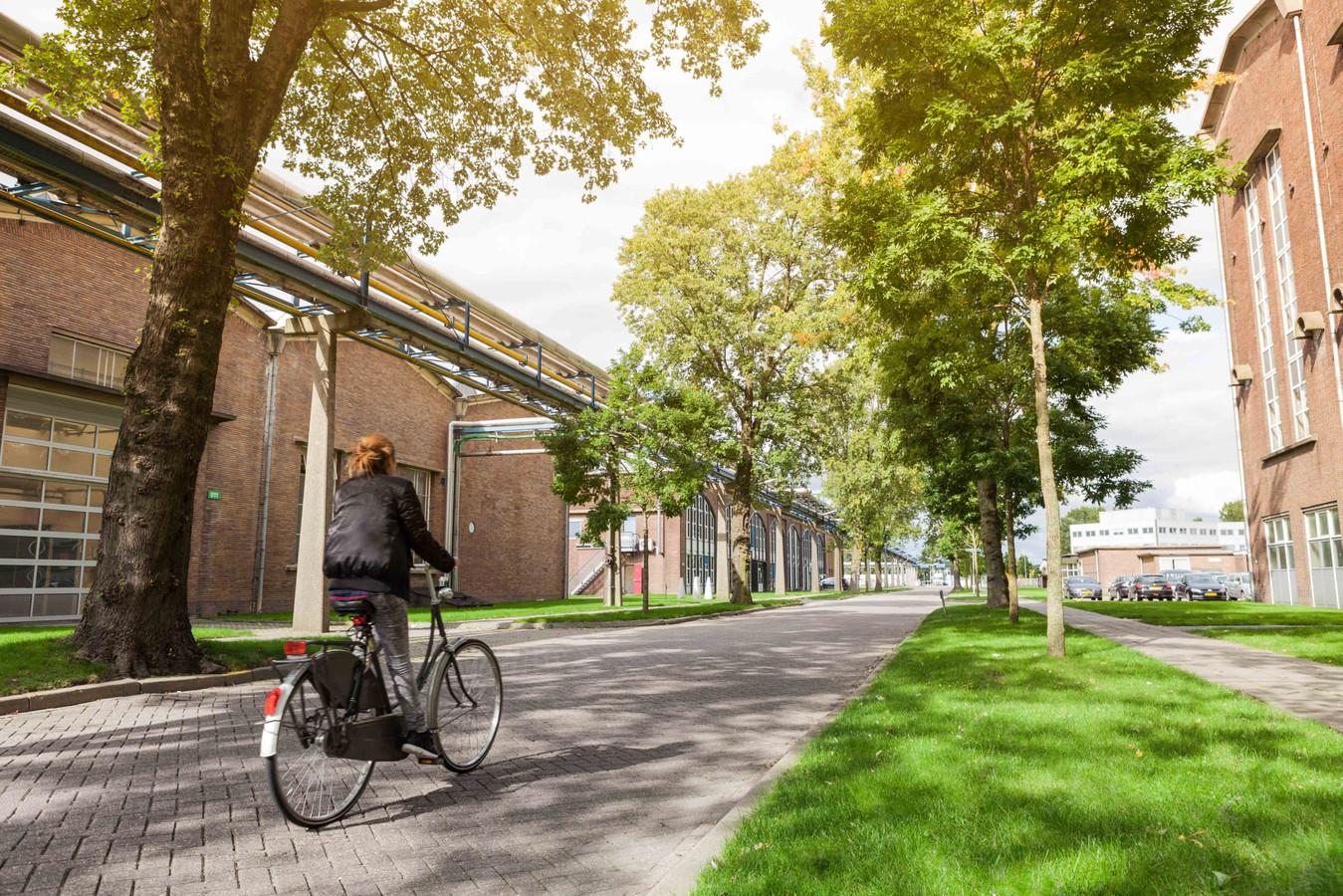 Industriepark Kleefse Waard in Arnhem waar de biomassacentrale van Veolia moet komen.
