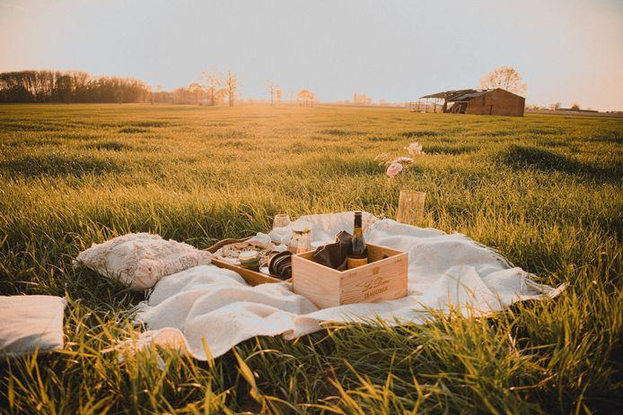 Een gezellige picknick.