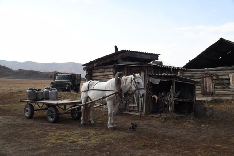 Boerderij in de Altaj-regio Beeld Claudia Heinermann